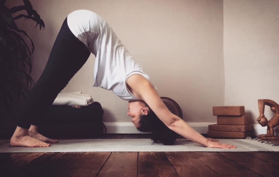 Downward facing dog: a posture from the sun salutation sequence.